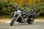 XVS1300 Midnight Star